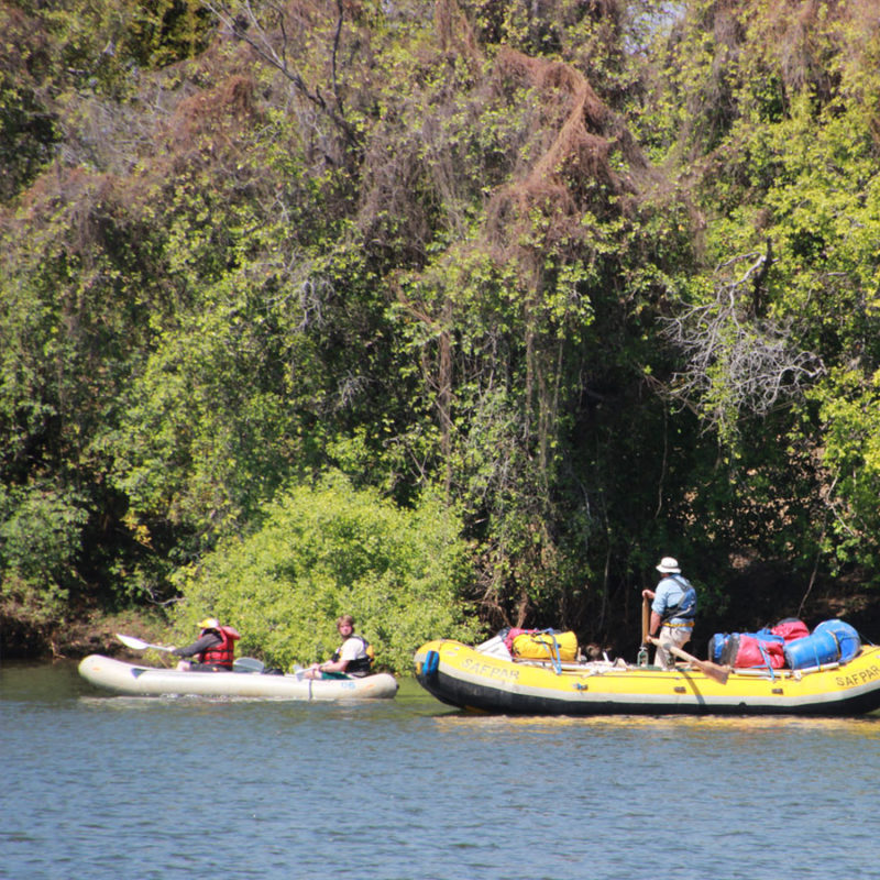 Overnight Canoe Zambezi River